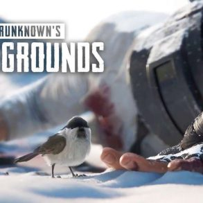 PlayerUnknow Battlegrouds