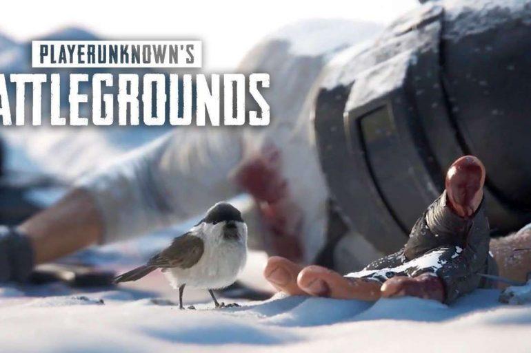 PlayerUnknow Battlegrouds